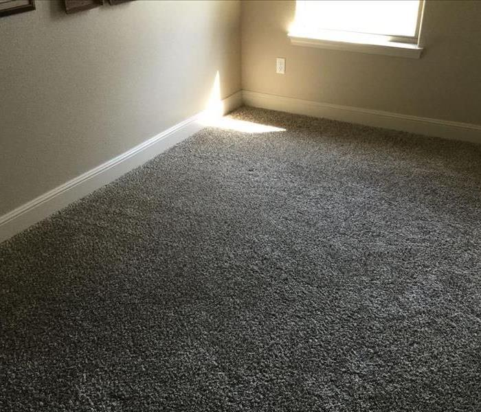 Wet Carpet and Baseboards