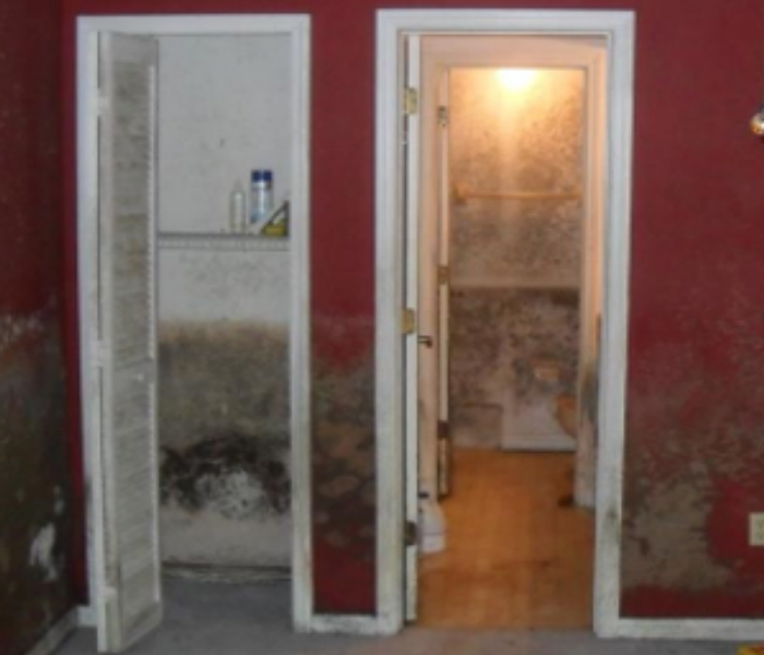 Mold Affects Part-Time Residence Before