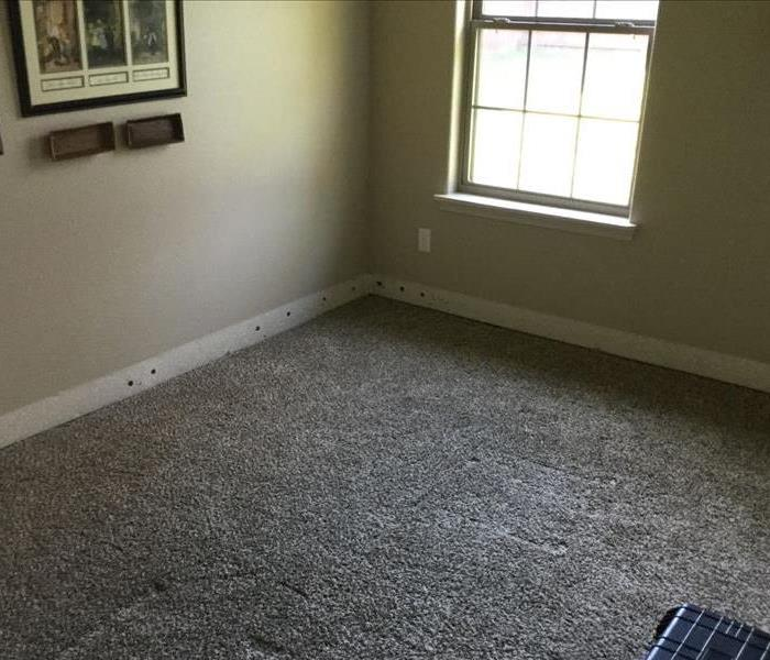 Dried Carpet with Baseboards removed