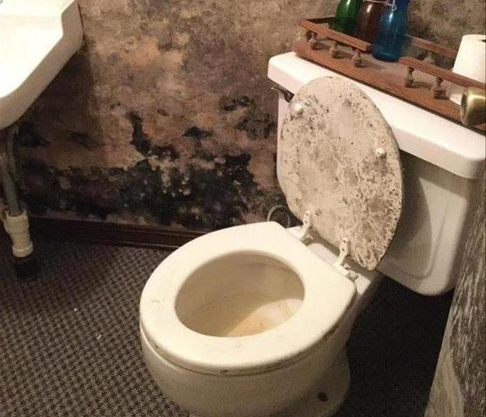Bathroom with extensive mold