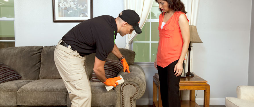 Joplin, MO carpet upholstery cleaning