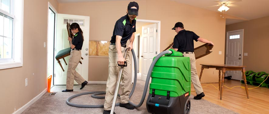 Joplin, MO cleaning services